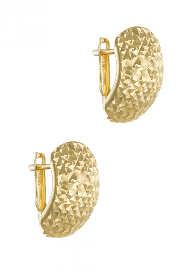 Σκουλαρίκι Χρυσό Shiny Party